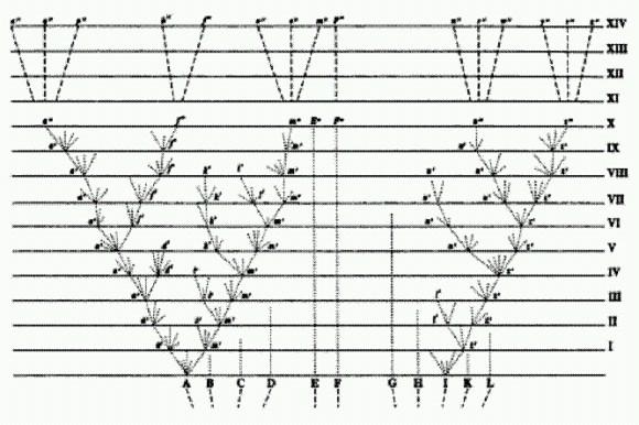 Классическая схема дивергенции