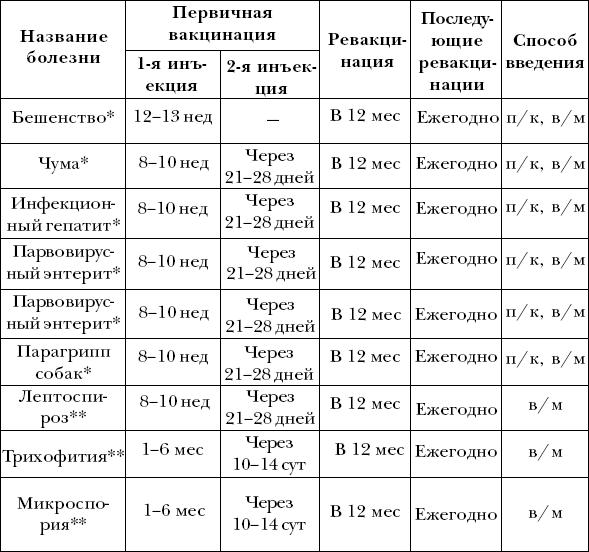 Размер пениса у дога