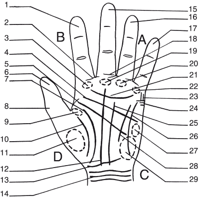 Рук расшифровка
