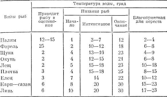 ЩУКА ФОРМУЛА КЛЕВА — часть 2