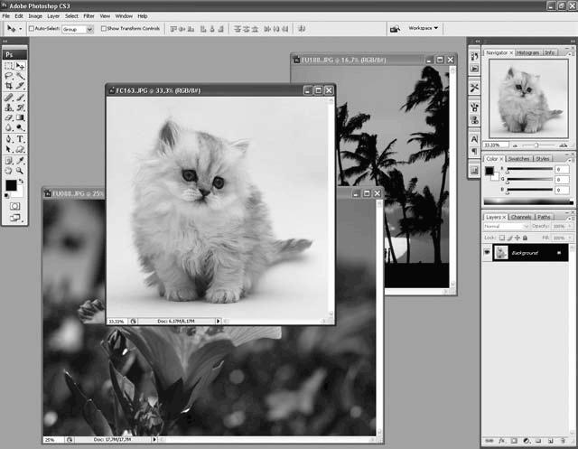 знакомство с photoshop cs3