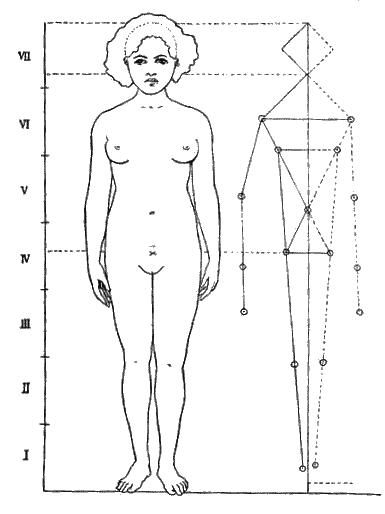 I. РАСЫ И РАСОВЫЕ ОСОБЕННОСТИ / Расовая женская красота