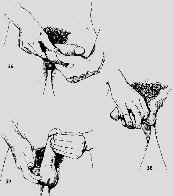 Как отделить семяизвержение от оргазма